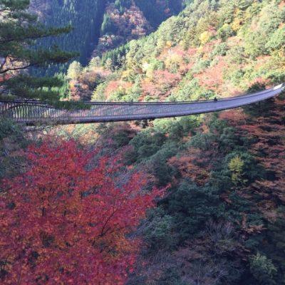 梅の木轟の滝・吊橋